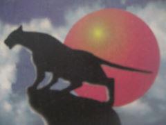 Кошка ((Ангелина Королевская( стихи Oleinukovnf