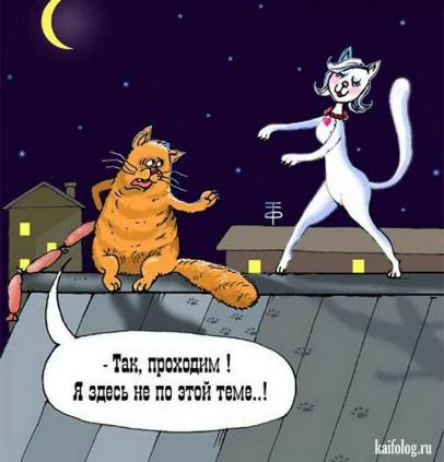 Кот матроскин стихи
