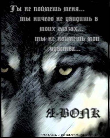 Скачать картинки про волков с надписями 3