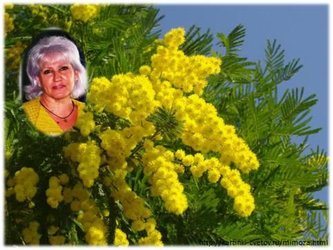 Фото авторов Стихи ру Проза ру сентябрь 28 Sovzikhanova