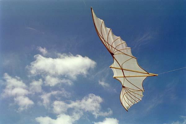 Как сделать крылья чтоб взлететь