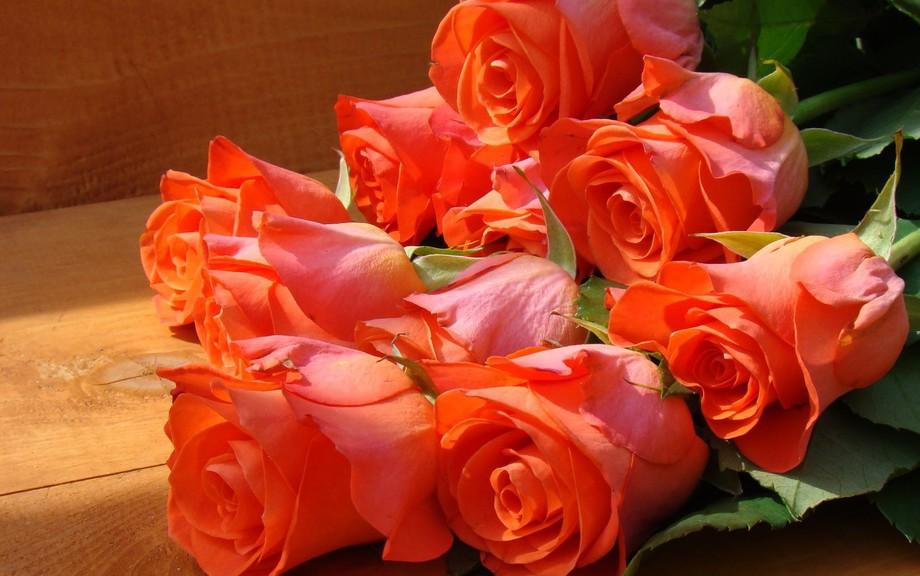 Роза королева цветов стихи