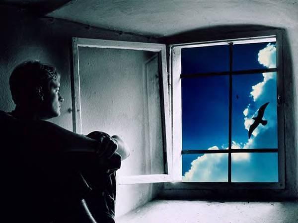 Мыть окна во сне в чужом доме