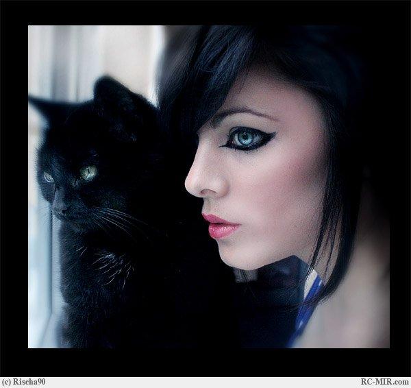 Дикой кошки андриан стихи ру