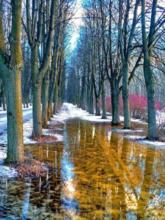 http://www.stihi.ru/pics/2008/04/13/3799.jpg