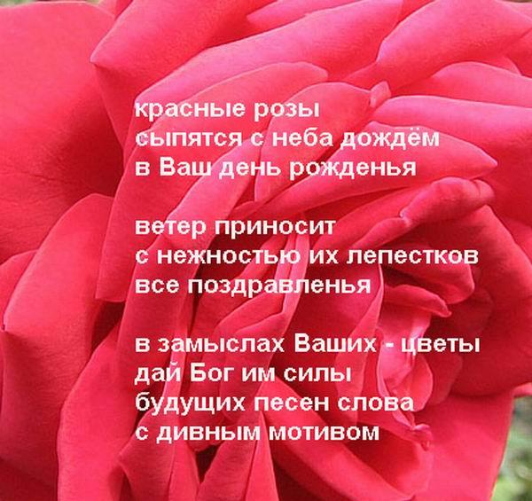 Стих не изменяйте жёнам