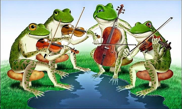 поющая жаба картинки бы