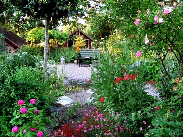 К июлю сад надевает самые пышные свои наряды.  Темно-зеленые кроны украшены окантовкой из светло-зеленых побегов со...