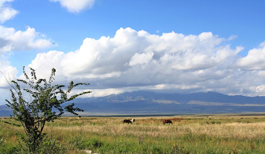 ...нынешних границ Казахстана, составлял Казахское Ханство в 1465 году.