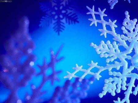 http://www.stihi.ru/pics/2008/12/24/498.jpg