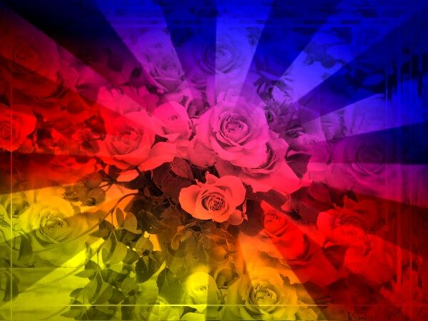 Цвета либо рядом лежащие цвета