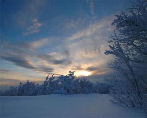 http://www.stihi.ru/pics/2009/02/03/1764.jpg