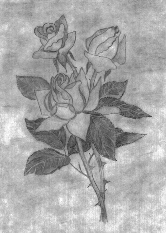 рисунок карандашом цветы, Аленький цветочек, аленький ...: http://tatu-msk.ru/risunok-karandashom-tsveti.html