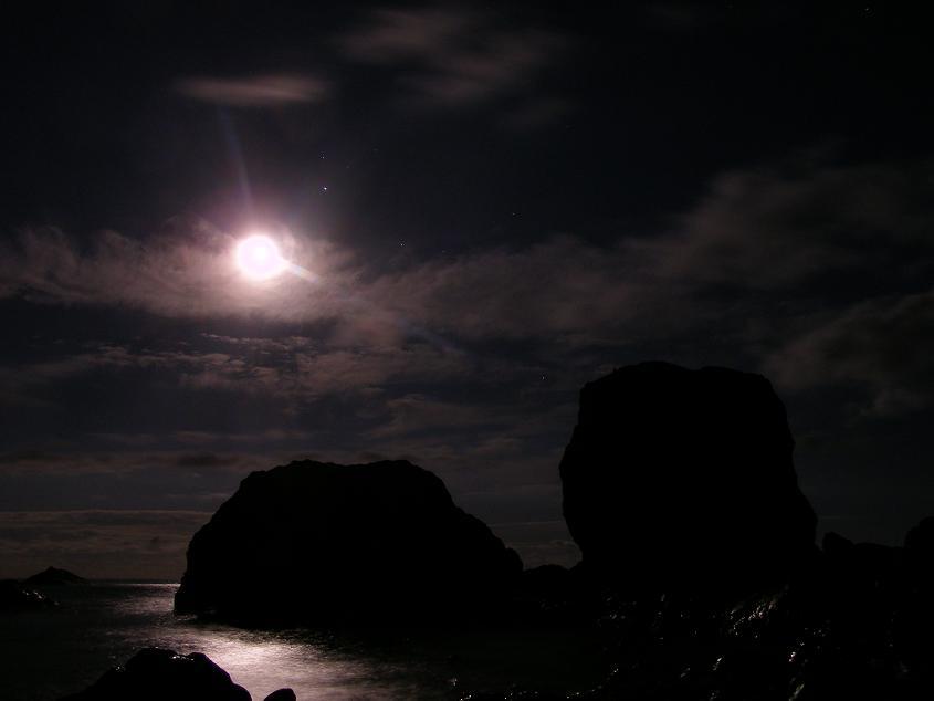 http://www.stihi.ru/pics/2009/02/13/483.jpg
