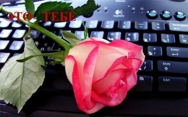Стихи для вашей лучшей подруги))))))))   Bad GIRL