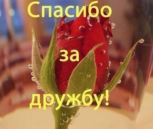 http://www.stihi.ru/pics/2009/03/19/1572.jpg