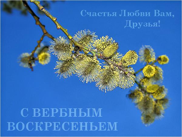 http://www.stihi.ru/pics/2009/04/11/7238.jpg