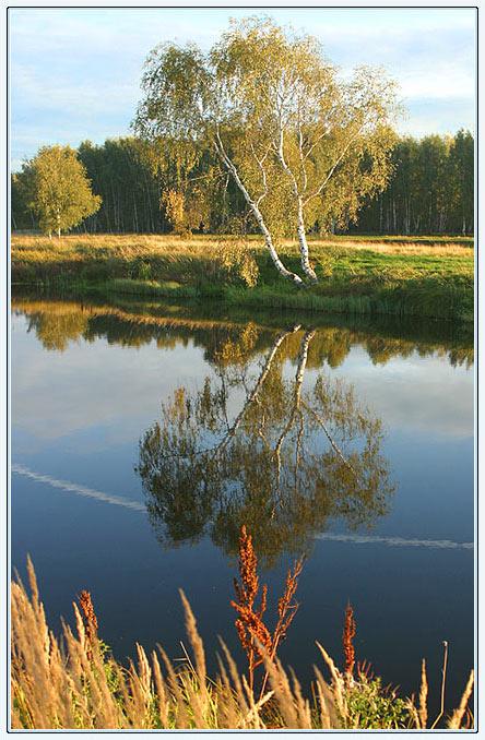 http://www.stihi.ru/pics/2009/05/10/1676.jpg