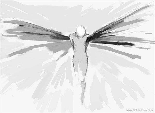 Крылья на антресолях...