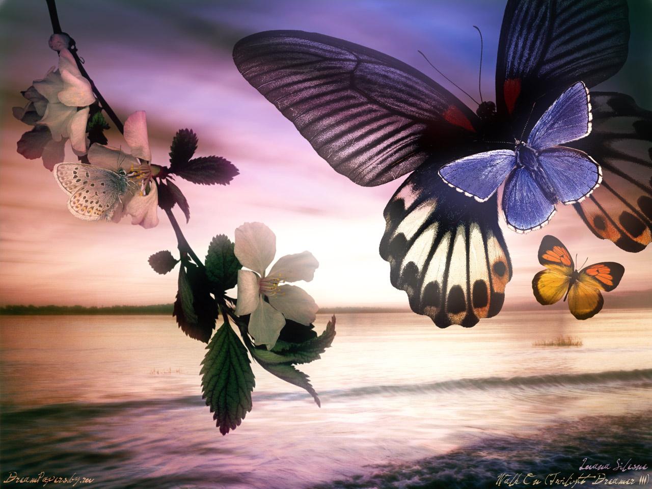 http://www.stihi.ru/pics/2009/06/08/3343.jpg