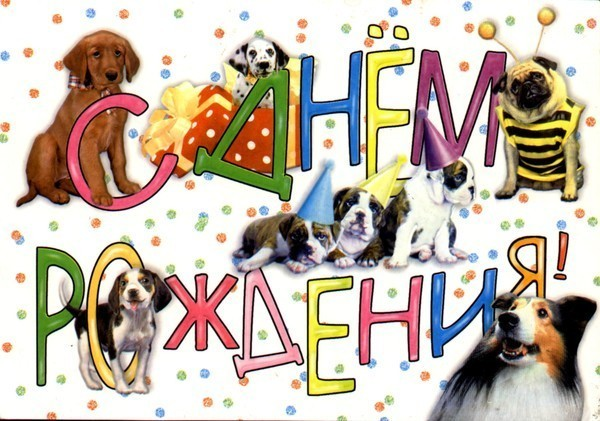 Поздравления для собачек