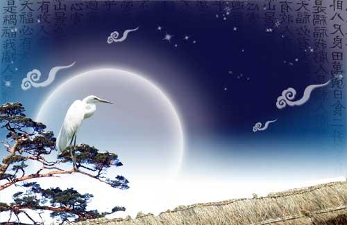 "...of the moon PSD template PSD исходник  ""Белая птица на фоне луны """