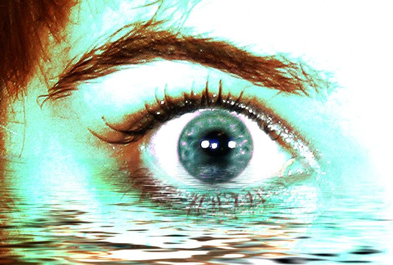 Глазные болезни собак и лечение