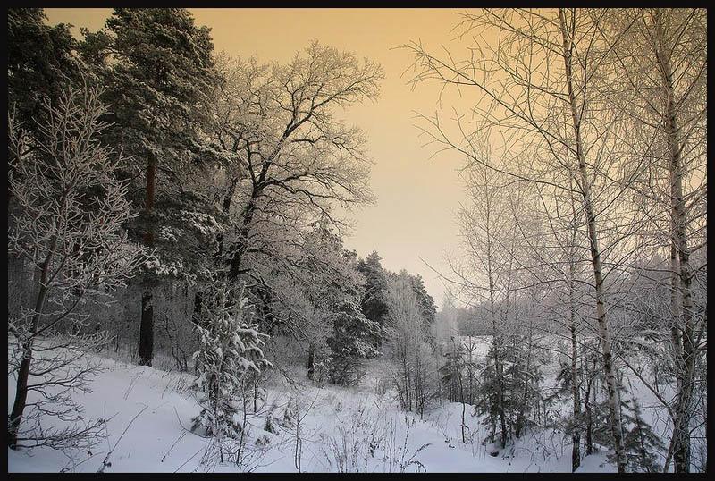 Погода была ужасная ветер выл мокрый снег падал