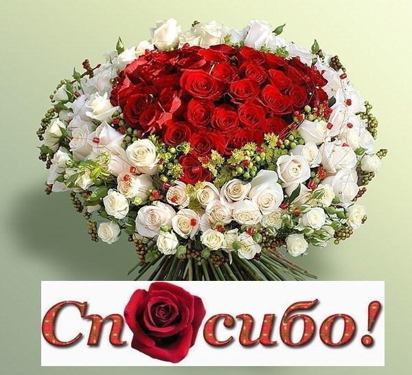e8d11654e066 Господи, спасибо тебе за всё... (Циля Вайнер)   Стихи.ру