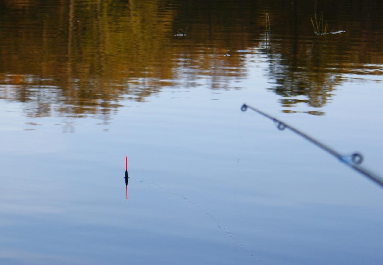 Рыбалка на удочку летняя видео