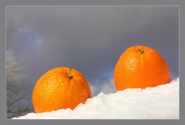 Картинки апельсины на снегу, поздравительные днем