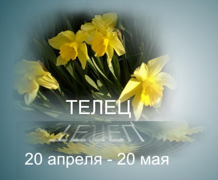 Знак Зодиака Телец 21 апреля  21 мая  женщина  Знак