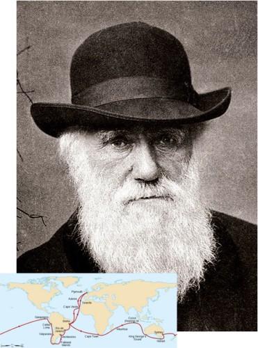 Дарвин ((Анфиса Третьякова-Федина 1370