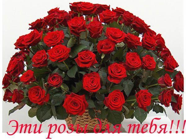 Вадюша, дорогой, с Днём рождения! - Поздравления