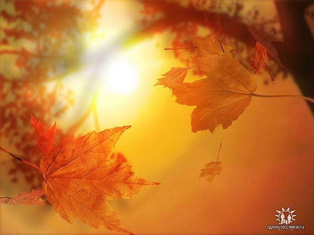 Осеннее утро наталия дюшкина