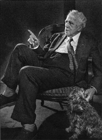 a theme of nature in robert frosts writings Popular nature poems by famous poets including robert frost, emily dickinson, rudyard kipling and john keats the power, ingenuity, and sheer beauty found in nature have inspired poets for centuries.