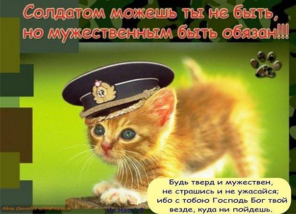 http://www.stihi.ru/pics/2010/11/04/7574.jpg