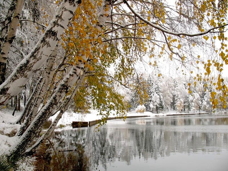 Анимационные открытки осень зима