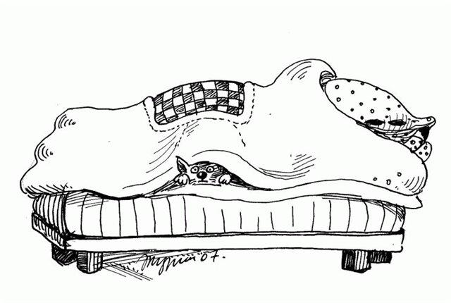 Я закутался в три одеяла... (Лидия Степанова -1) / Стихи.ру