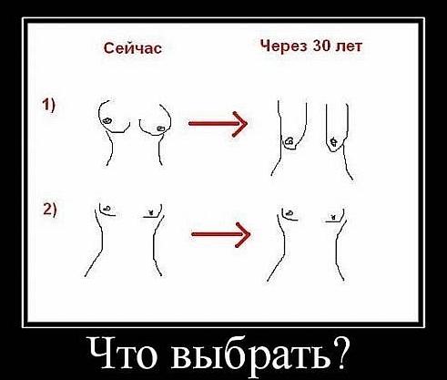 Размер женской груди в профиль