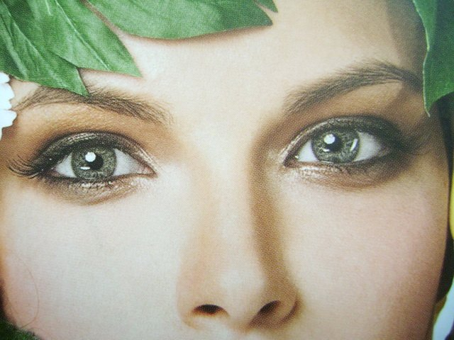 Глаза цвета хаки кетрин 84 стихи ру