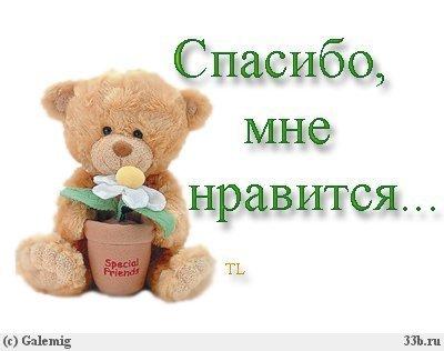 http://www.stihi.ru/pics/2011/06/16/590.jpg