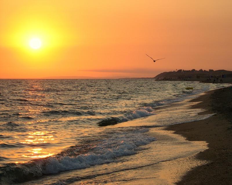 Поздравления с морем и солнцем 35