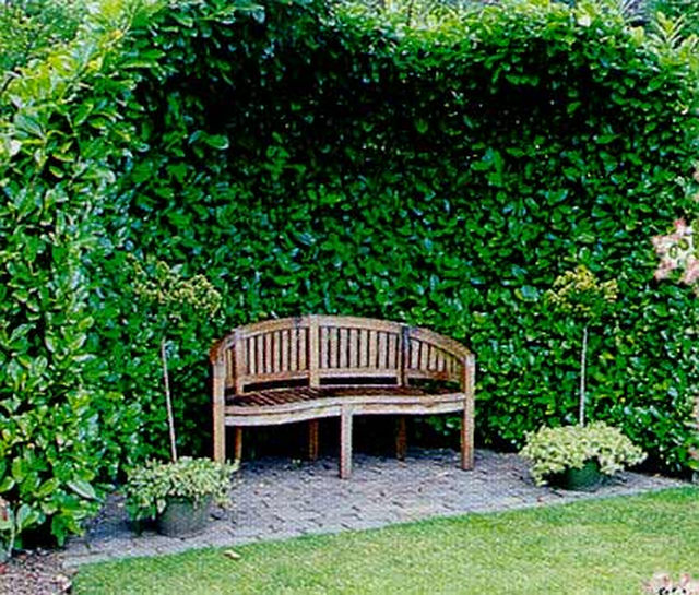 Классические малые архитектурные формы для сада.