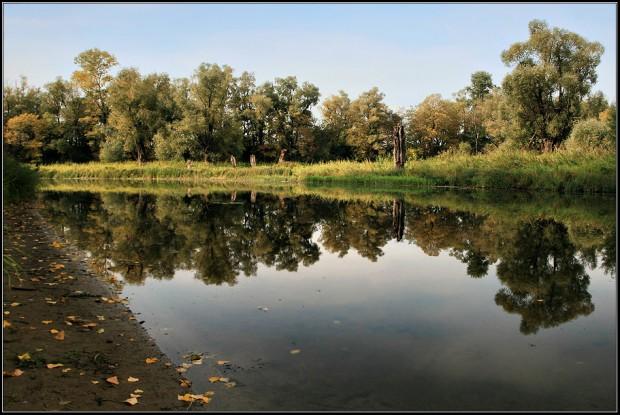 GISMETEO RU: Погода в Таштаголе на месяц Прогноз