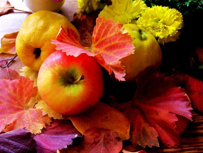 http://www.stihi.ru/pics/2011/12/13/4702.jpg
