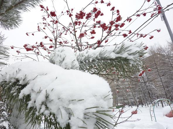 http://www.stihi.ru/pics/2011/12/29/2539.jpg