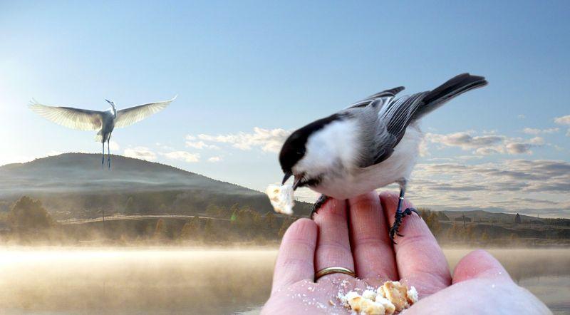 http://www.stihi.ru/pics/2012/01/08/328.jpg?3356