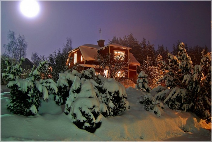 Ели в шубах, снег по пояс