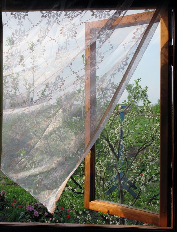 Ветерок в окно дует пара странная